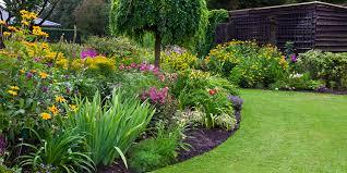 Bahçe Bitkileri nedir