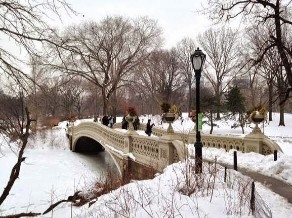 Visit The Bow Bridge by Central Park Pedicab Tours