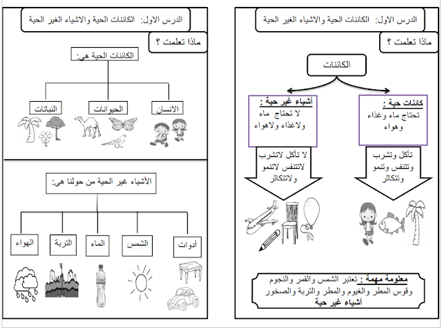 ملخص دروس الوحدة الاولي في العلوم للصف الاول