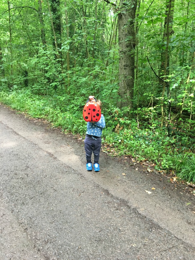 toddler-holding-My-Carry-Potty-from-Cheeky-Rascals-at-st-Fagans-museum-on-a-country-lane