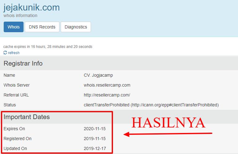 Cara Paling Cepat Mengecek Status Masa Aktif Domain