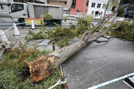 Νότια Κορέα και Ιαπωνία πλήττονται από τυφώνες