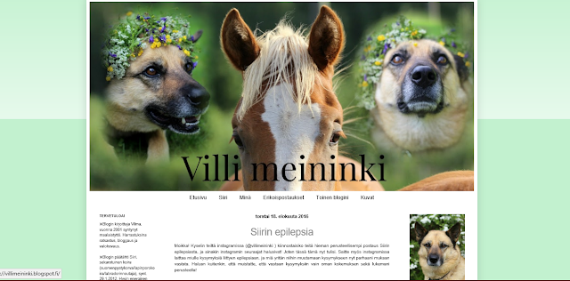 http://villimeininki.blogspot.fi