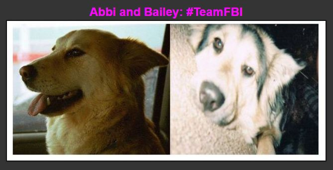 Abbi and Bailey... From The Heart: 11172016 - Lake County ...