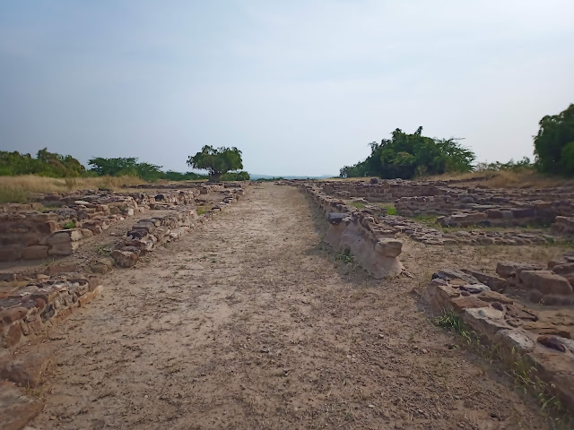 Long path with trees at the end, house foundations of Middle Town on either side of path