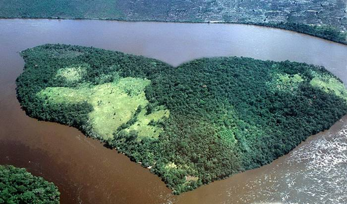 Forest island on the river Orinoco, Venezuela