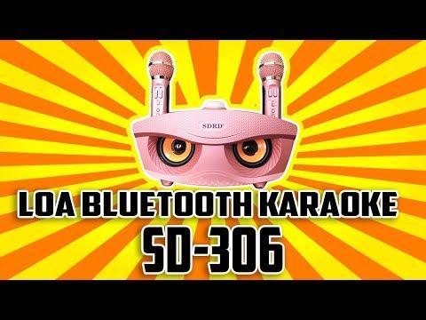 Loa bluetooth karaoke SD-306 kèm 2 micro không dây đa năng