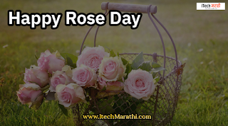 roj day photo रोझ डे फोटोज्,happy rose day images download,happy rose day photo