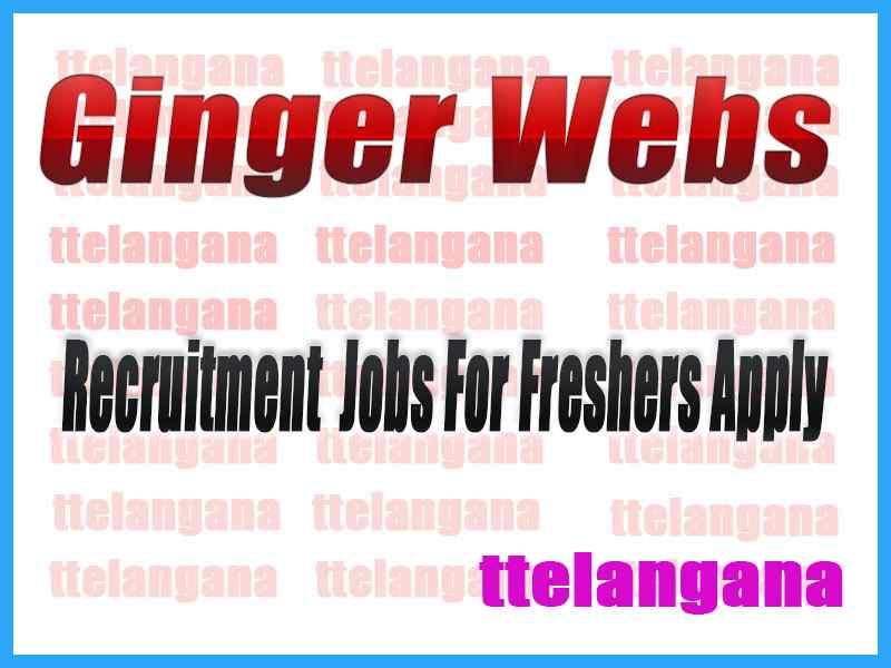 Ginger Webs Recruitment Jobs For Freshers Apply
