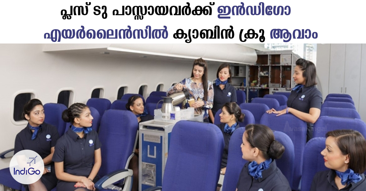 Cabin Crew vacancy in Indigo Airline.