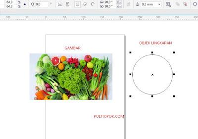 cara memasukan gambar ke objek di coreldraw x5