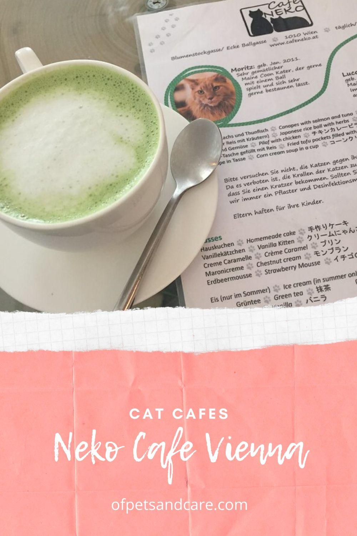 Vienna's Neko Cafe