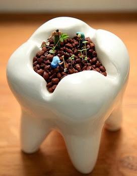 Cara mengobati sakit gigi berlubang secara alami - Info Sehatku cca835a290