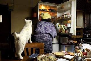dipinti di gatti