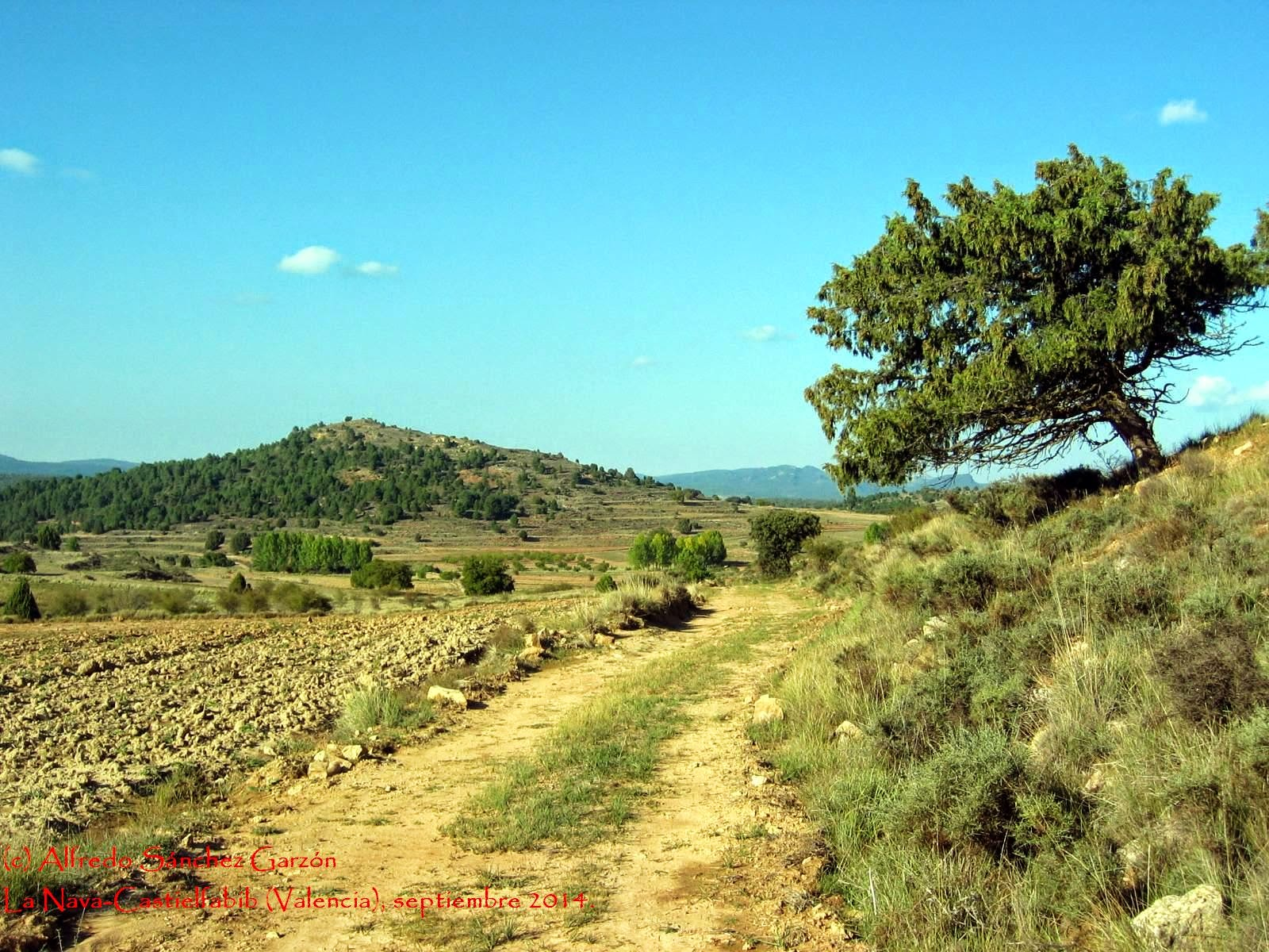 nava-castielfabib-cerro-morrita