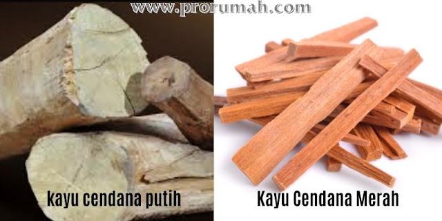 kayu cendana putih - merah