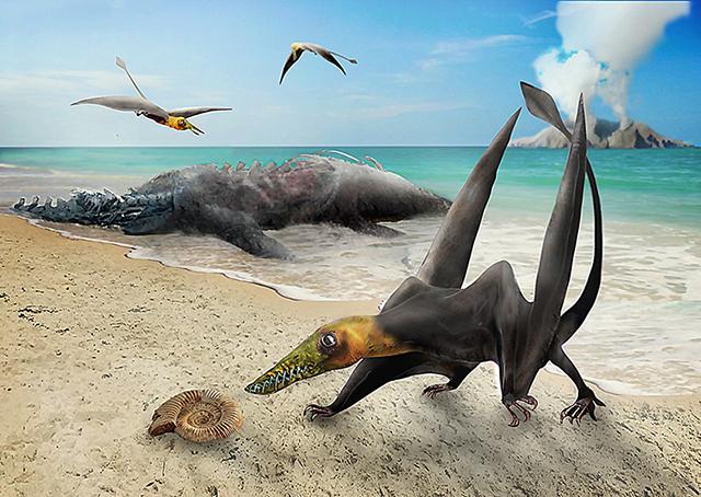 El hallazgo corresponde al más antiguo pterosaurio encontrado hasta el momento en Chile, un reptil volador de la familia de los ranforrincos que vivió en el período Jurásico.