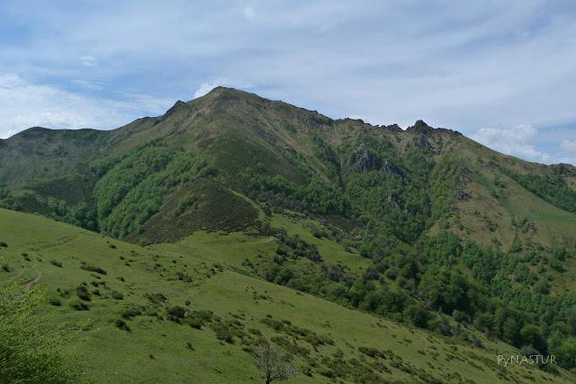 Collada Traslafuente y Pico Maoñu - Piloña y Parque Natural de Ponga