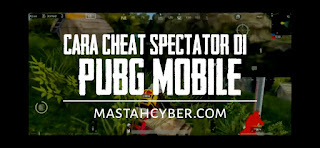 Cheat spectator pubgm