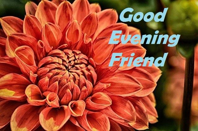 good evening for friend