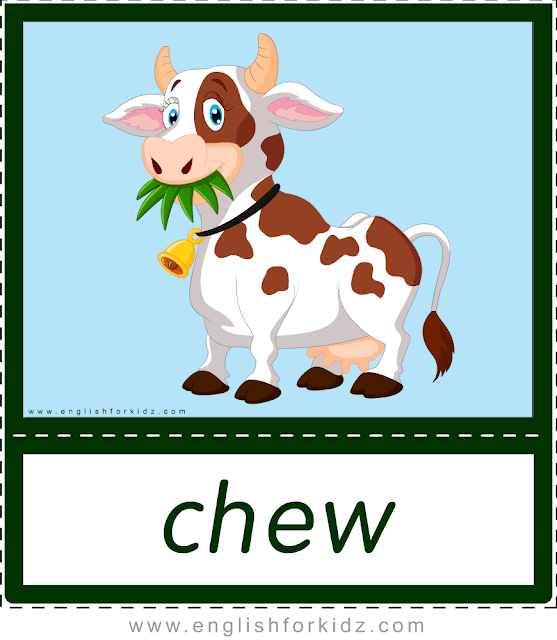 Chew (cow) - printable animal actions flashcards for English learners