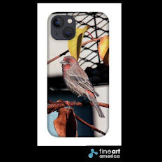Buy my Phone Cases!