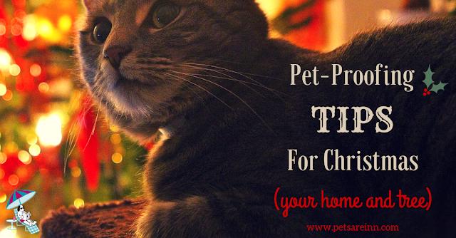 Pet proof Christmas
