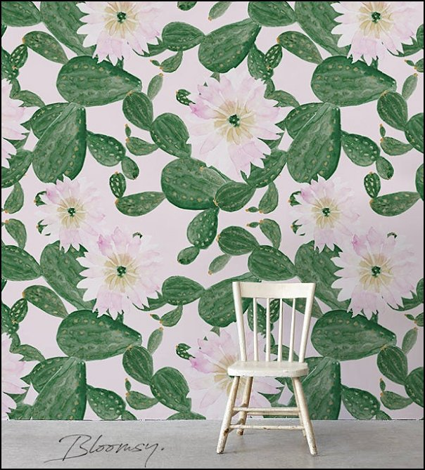 Cacti Flowers Wallpaper - Cactus Wallpaper cactus decor