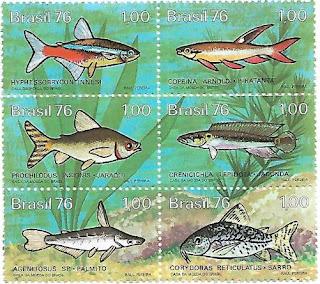 Série Peixes Brasileiros de água Doce - 1976