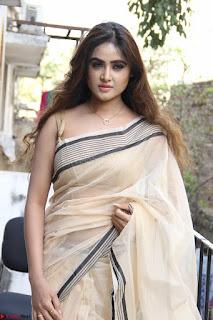 Sony Charishta in Brown saree Cute Beauty   IMG 3586 1600x1067.JPG