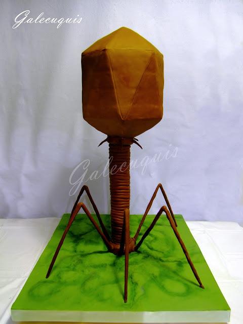 Bacteriophage cake