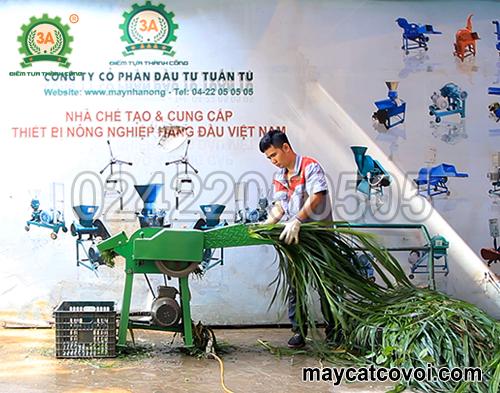 Kỹ thuật viên sử dụng Máy băm cỏ cho bò giá rẻ 3A2,2Kw