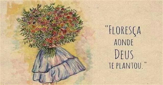 Deus te plantou