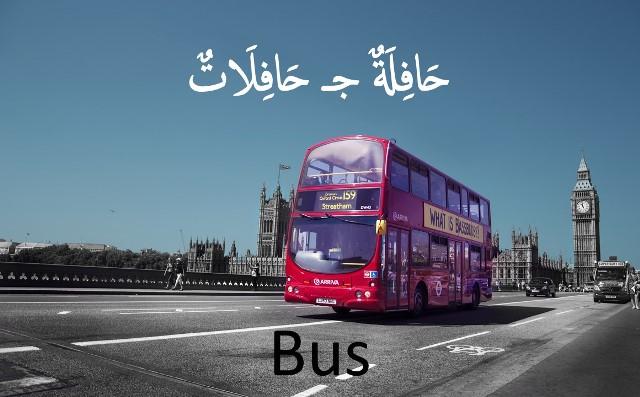 bahasa arab bus