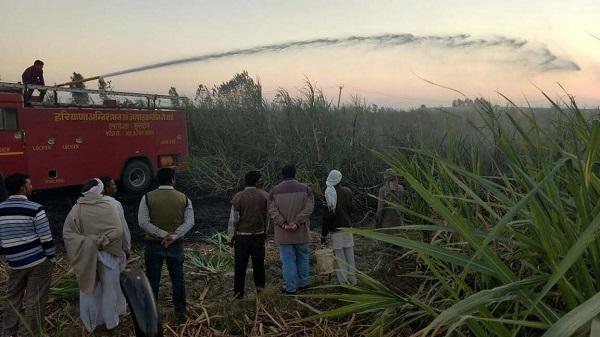 गन्ने के खेत में आग लगने से किसान का लाखों का नुक्सान