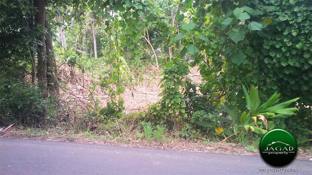 Tanah dekat Pusat Kota Kulon Progo