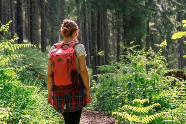 Premiumwanderweg Murgleiter | Etappe 5 von Baiersbronn zum Schliffkopf | Wandern nördlicher Schwarzwald 10
