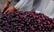 Bulan Ramadan, 3 Cara Meramu Minuman dari Kurma