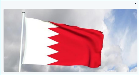 إحباط عدد من الأعمال الإرهابية في البحرين والقبض على ١١٦ عنصراً إرهابياً