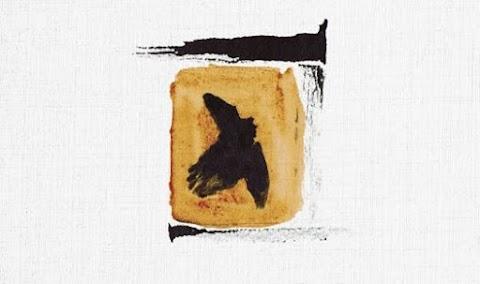 Une carte postale, oui presque, de Thibaud Defever ...
