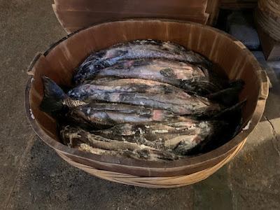 鮭の塩漬け