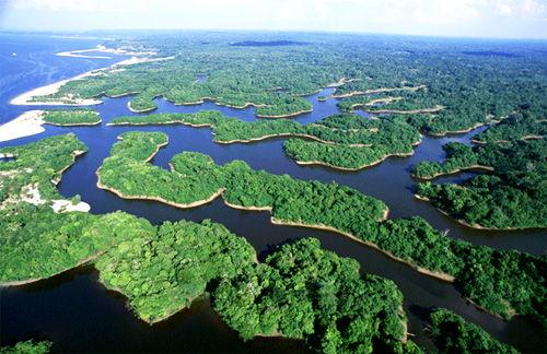 Futurismólogo: Parque Nacional de Anavilhanas - AM - Turismo