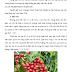 Thiết kế nhà máy sản xuất cà phê bằng phương pháp ướt năng suất 30 tấn/ ngày tại thị trấn Ke Sanh - Huyện Hướng Hóa - Tỉnh Quảng Trị