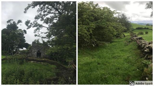 ruined farm and sunken lane