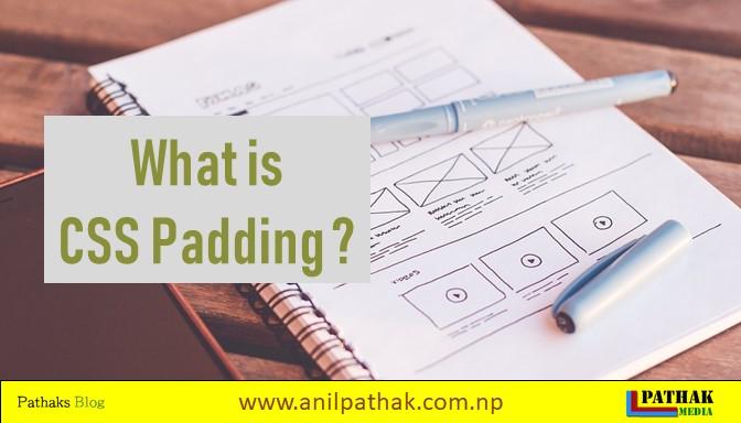 what is css padding, pathaks blog, anil pathak