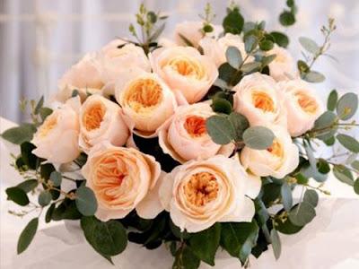 hoa hồng juliet đắt nhất