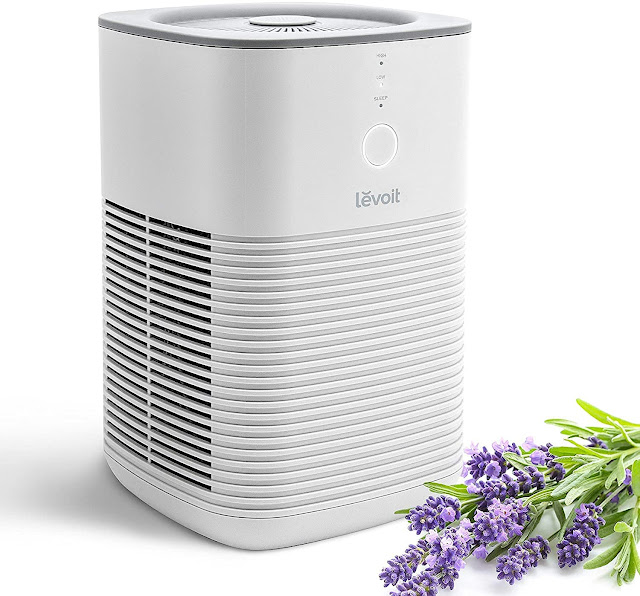 best-levoit-air-purifier-reviews