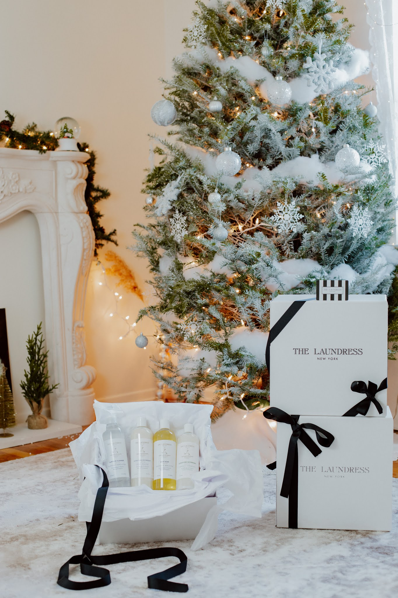 HOLIDAY GIVEAWAY** THE LAUNDRESS