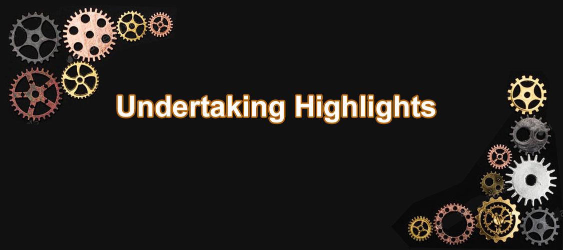 Undertaking Highlights
