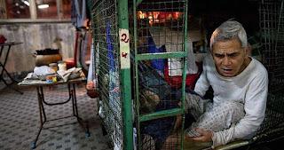 Μέσα στα πανάκριβα σπίτια - κλουβιά του Χονγκ Κονγκ